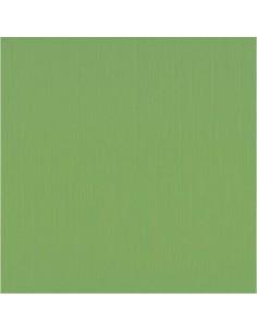 Cartulina Textura 30,5x30,5cm Verde